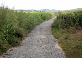Terenuri private pe care s-a intrat abuziv și s-a construit un drum ?