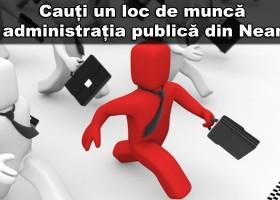 LOCURI DE MUNCĂ ÎN ADMINISTRAȚIA PUBLICĂ DIN NEAMȚ LA 30.11.2015