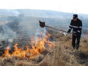 incendiu-vegetatie-uscata-mar-2014
