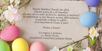 felicitare-Emilia-Arcan-1024x770