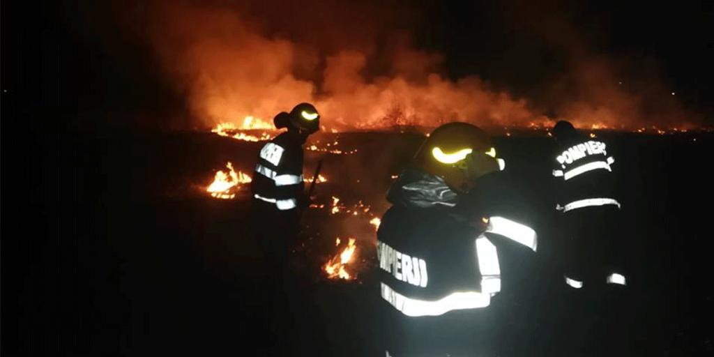 Ardere vegetație Piatra-Neamț